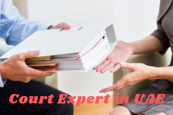 court expert services provider UAE