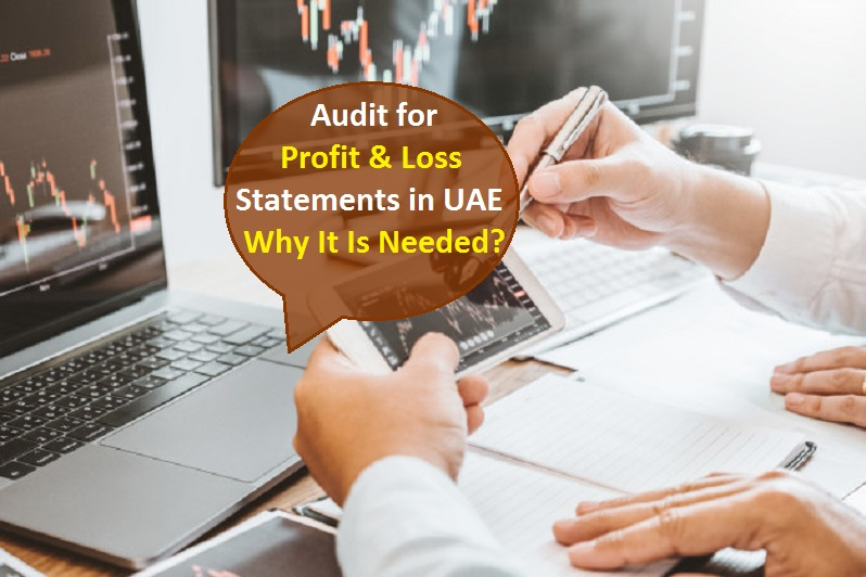 Audit for Profit and Loss Statements in UAE