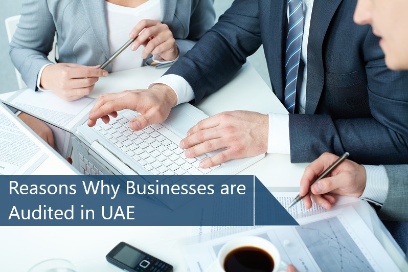 Reasons Why Businesses are Audited in UAE